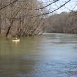 RIVER_IMG_0336_512